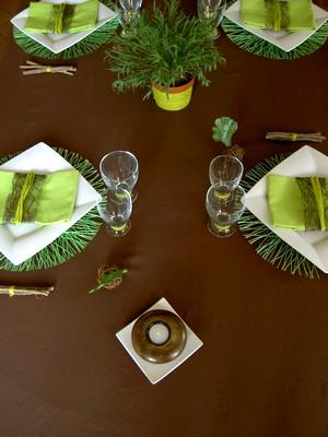 Jungle set de table rond vert anis en sinamay nappe polyester chocolat assiette carr e - Deco table jungle ...