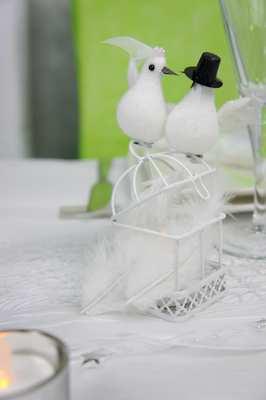 colombes et mini cage pour deco de table mariage | 1001 deco table