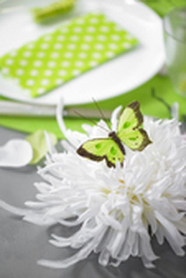 Acheter papillon bicolore sur tige vert anis x6 d coration de table 1001 deco table - Papillon sur tige ...