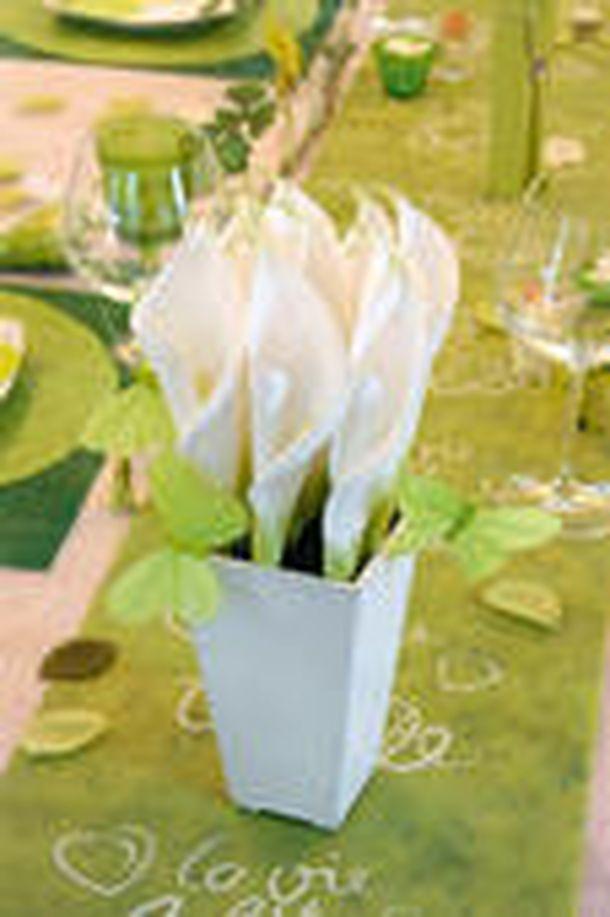 Vente papillon uni sur tige vert anis x6 d coration de table 1001 deco table - Papillon sur tige ...