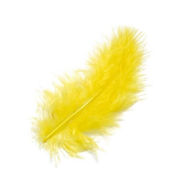 plume jaune