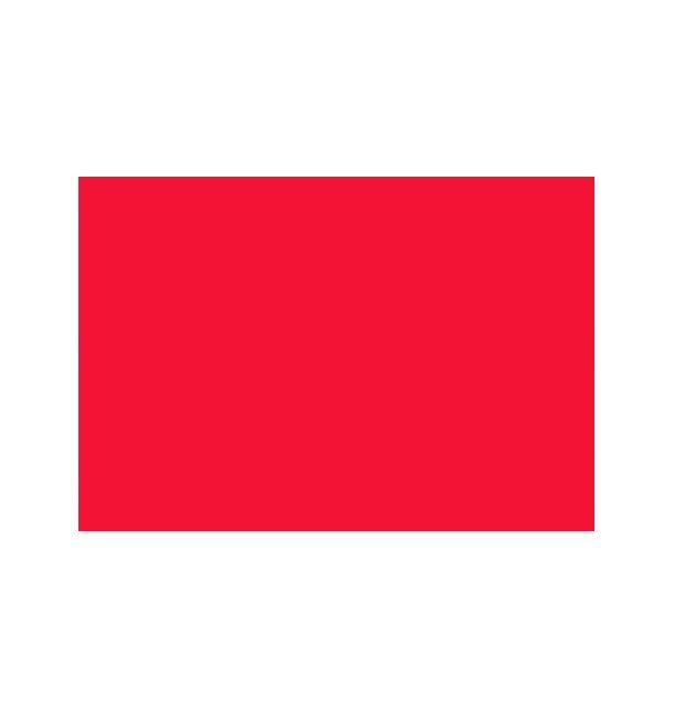 25 Feuilles A4 Papier Rouge Foncé 120gr 1001 Déco Table